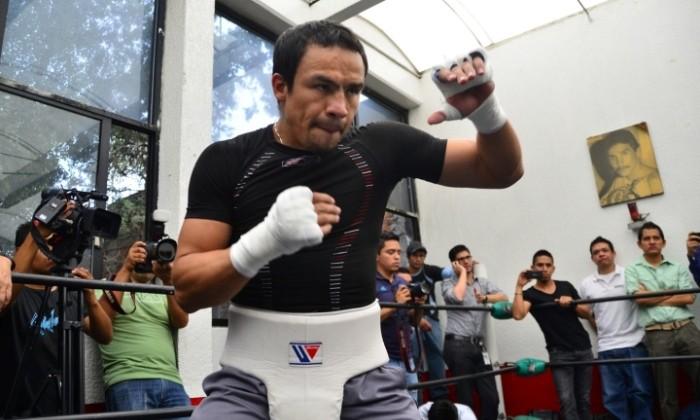 Хуан Мануэль Маркес, BoxingScene