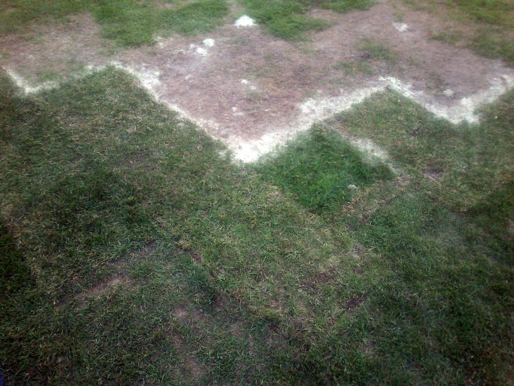 Как выглядит «огород» вПолтаве, где всреду сыграет «Шахтер»