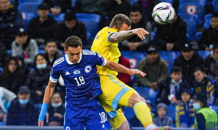 15 фактов о матче Украина – Босния и Герцеговина